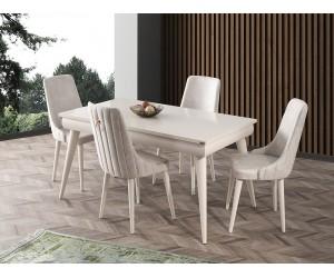 Комплект маса Sahra 560 със столове Sahra 069